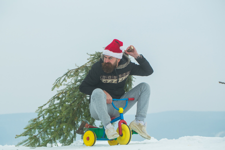 Holiday celebration concept. Hipster carrying xmas tree on white snow. Christmas and new year. Frown cyclist in santa hat and sporty wear. Man riding tricycle on snowy landscape. Stock Photo