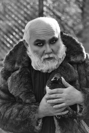 old bearded man with long white beard on serious face with makeup in fur coat holding colorful pheasant bird sunny day outdoor