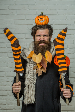 Halloween man holding striped stockings on sticks on brick wall. Angry hipster with pumpkins and yellow leaves in beard hair. Trick or treat. Holiday celebration concept. Autumn and harvest season.