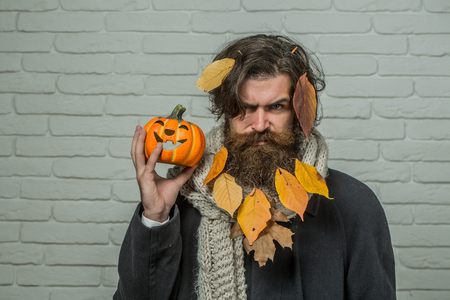 Halloween hipster with yellow leaves in beard hair. Man holding pumpkin in hand on brick wall. Holiday celebration concept. Autumn and harvest season. Trick or treat.