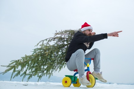 Hipster carrying xmas tree on white snow. Christmas and new year. Angry cyclist in santa hat and sporty wear pointing finger. Holiday celebration concept. Man riding tricycle on snowy landscape.