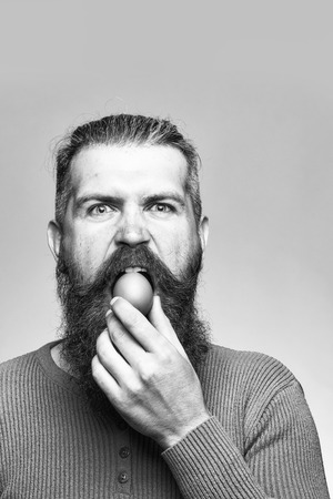 handsome bearded man with long lush beard and moustache on serious sad face holding egg in yellow shirt in studio on grey background