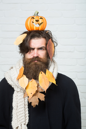 Halloween man holding pumpkin on head on brick wall. Hipster with yellow leaves in beard hair. Holiday celebration concept. Autumn and harvest season. Trick or treat.