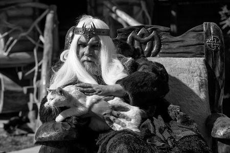 ドルイドの毛皮のコートでクラウンと灰色の長い髪髭の老人が猫を保持し、ログ家背景に木の椅子に座っています。