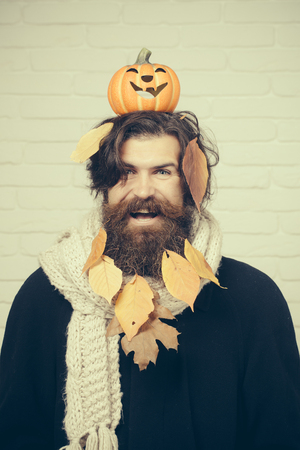 Halloween holiday celebration concept. Hipster smiling with yellow leaves in beard hair. Man holding pumpkin on head on brick wall. Trick or treat. Autumn and harvest season.