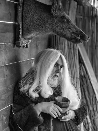 長い銀の髪と髭を持つ老人ドルイドを保持するイノシシのぬいぐるみ頭背景に木製マグカップ