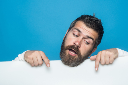 Man with long beard and mustache. Hipster with surprised face hold paper. Guy or bearded man on blue background. Barber fashion and beauty marketing. Feeling and emotions. Stock Photo