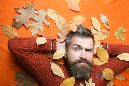 man with autumn leaves and beard on orange background