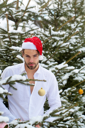 Macho in santa hat in snow wood. Man buttoning white shirt on winter day. Christmas and new year. Holidays celebration concept. Stock Photo