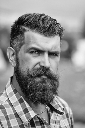 Frown handsome bearded man with beard moustache and gray hair stylish hipster male in blue checkered shirt outdoor, closeup