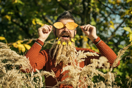 barber: Spikelet beard at barber and hairdresser. Floral fashion and beauty. Hipster or bearded guy in autumn nature outdoor. Season and autumn leaves with flower. Man with natural spikelet beard sunny fall. Stock Photo