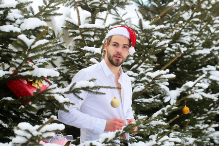 Man buttoning white shirt on winter day. Macho in santa hat in snow wood. Christmas and new year. Holidays celebration concept.