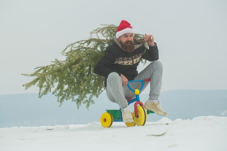 Christmas and new year. Holiday celebration concept. Cyclist in santa hat and sporty wear on winter day. Man riding tricycle on snowy landscape. Hipster carrying xmas tree on white snow. Stock Photo