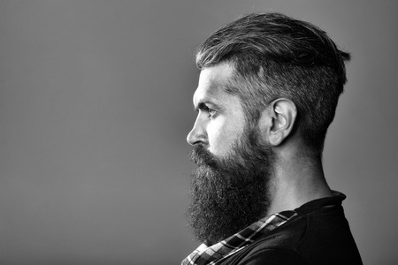 young handsome bearded man with long beard moustache and brunette hair with emotional face in studio on grey background, copy space