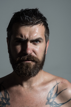 Feeling and emotions. Man with long beard and mustache. Guy with naked shoulder on grey background. Hipster with serious face. Barber fashion and tattoo beauty.