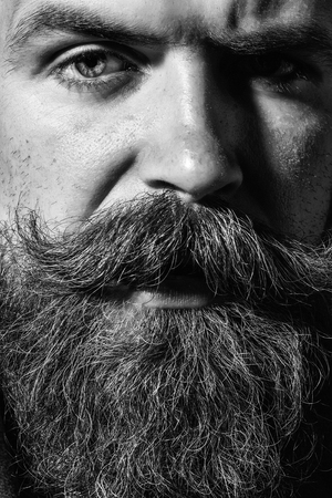 Frown serious bearded man with beard moustache and gray hair stylish hipster male, closeup