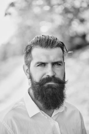 自然の背景晴れた日の屋外で屋外に立って白いシャツで長いひげを持つハンサム若いスタイリッシュなヒップスターの男性