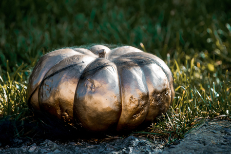 Citrouille d'halloween sur l'herbe. citrouille dorée en toile d'araignée. récolte d'automne et nourriture de vacances. fête d'halloween et célébration de vacances., luxe et succès Banque d'images - 88407347