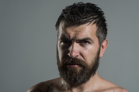 Barber fashion and tattoo beauty. Hipster with serious face. Guy with naked shoulder on grey background. Feeling and emotions. Man with long beard and mustache.