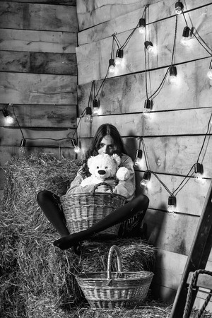 Pretty girl teenager young woman cookee helper in apron sits on straw bales with wicker basket and teddy bear toy on rustic background Reklamní fotografie