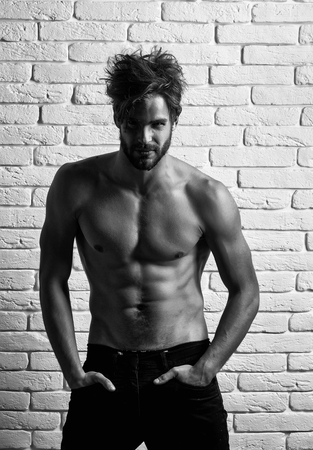 Handsome man or bodybuilder, sexy, young, blond, bearded, athlete, male model with beard shows muscular torso, abs, biceps, triceps on white brick wall
