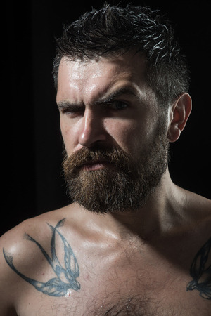 Hipster with serious face. Guy with naked shoulder on black background. Feeling and emotions. Barber fashion and tattoo beauty. Man with long beard and mustache.