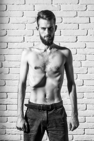 handsome bearded man or hipster guy dieting with bare slim or thin body, chest and torso with anorexia on white brick wall background Archivio Fotografico