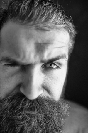 young handsome bearded man portrait with hipster beard and mustache on serious face Stok Fotoğraf