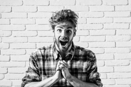 Excited handsome man sexy young blond bearded male model with beard in plaid shirt shouts and folds hands together on white brick background