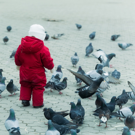 Child walking in red warm overall with pigeons on paved city square. Grey urban landscape. Flock of birds. Childhood, leisure, activity and having fun outdoors Stok Fotoğraf