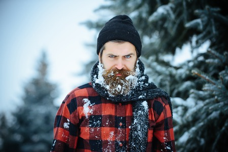 Christmas hipster in hat at wood. Wanderlust, hiking and travel. New year man in snowy cold forest. Winter holiday and celebration. Man with beard in winter forest with snow. Stok Fotoğraf