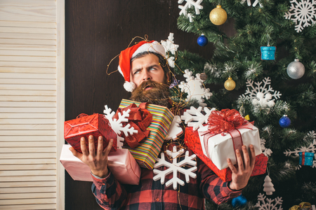 santa claus man with present box at christmas tree boxing day and cyber monday
