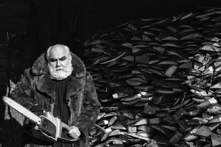 Oude bebaarde man met lange zilveren baard en snor in bont jas bedrijf grote kettingzaag zonnige dag buiten op hout achtergrond Stockfoto