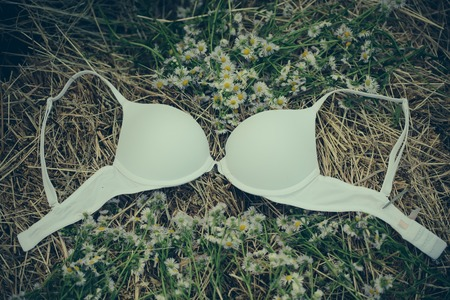 Fashion, underwear, lingerie. Bra and camomile flowers on natural hay background. Erotic, sensuality, romance concept.