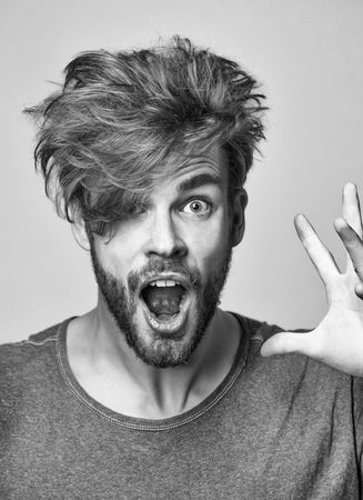 Angry man or handsome fashion model, bearded hipster with beard and stylish, shaggy, blond hair, hairstyle, shouts furiously on grey background