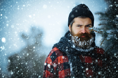 Christmas and new year snow concept Christmas hipster in hat at wood. Man with beard in winter forest with snow. Wanderlust, hiking and travel. New year man in snowy cold forest. Winter holiday Banco de Imagens