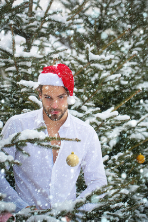 new year christmas snow concept Macho in santa hat in snow wood. Man buttoning white shirt on winter day. Christmas and new year. Holidays celebration concept.