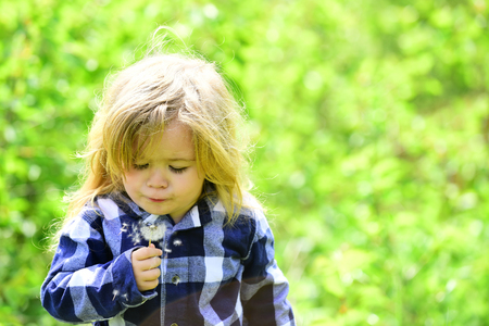 Boy with flower on idyllic sunny day. Freedom, activity, discovery. Child blow dandelion in spring or summer park. Kid with long blond hair in plaid shirt outdoor. Childhood, future, growth concept. Stock Photo