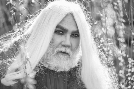 Druid old man with long grey hair and beard on serious face in yellow flower bloom sunny day outdoor on natural background