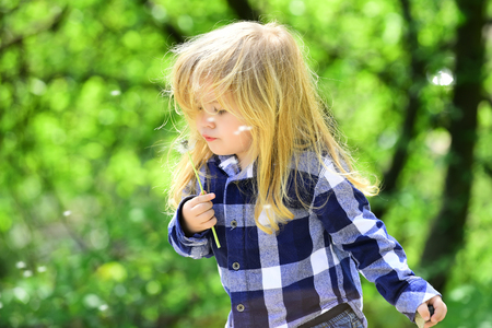 Boy with flower on idyllic sunny day. Child blow dandelion in spring or summer park. Childhood, future, growth concept. Kid with long blond hair in plaid shirt outdoor. Freedom, activity, discovery.