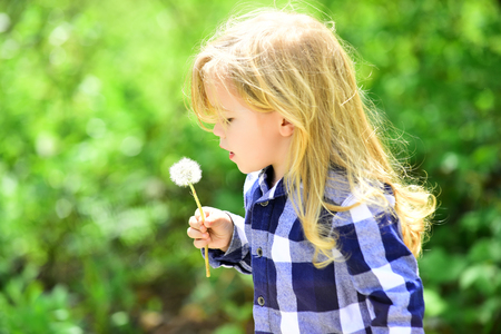 Childhood, future, growth concept. Child blow dandelion in spring or summer park. Freedom, activity, discovery. Kid with long blond hair in plaid shirt outdoor. Boy with flower on idyllic sunny day.
