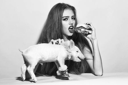 Beautiful young sensual woman and cute pink small pig pet in cloth eating tasty big fresh burger on yellow background, horizontal picture Stock Photo