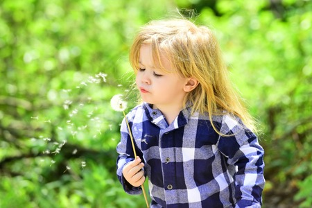 Child blow dandelion in spring or summer park. Boy with flower on idyllic sunny day. Freedom, activity, discovery. Kid with long blond hair in plaid shirt outdoor. Childhood, future, growth concept. Stock Photo