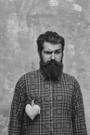 Frown bearded man, caucasian hipster, with long beard and mustache with rosy textile heart, love gift for valentines day 版權商用圖片 - 93385719