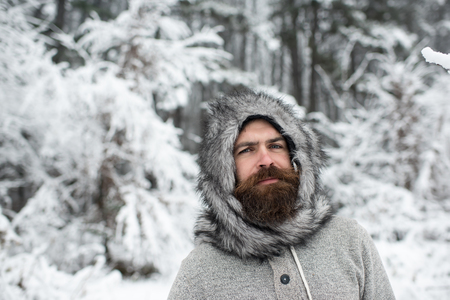 Hipster or bearded man in thermal jacket, fur hat in snowy forest. Beard warm in winter. Skincare, beard care in winter. Temperature, freezing, cold snap. Vacation, rest, activity. 免版税图像