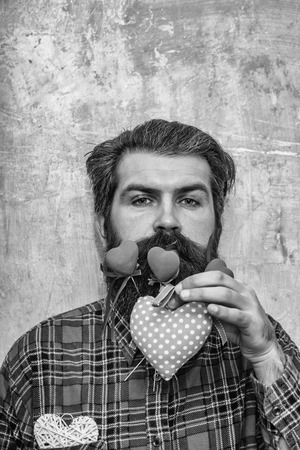Serious bearded man, caucasian hipster, with red and rosy textile heart on long beard and moustache, wicker heart in pocket of plaid shirt on beige wall background. Love gifts for valentines day