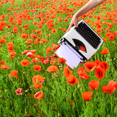 Journalism and writing, summer. Opium poppy, agile business, ecology. Vintage typewriter in hand, education, business, grammar. Poppy, new technology, Remembrance day. Drug, narcotics, opium, novel. Reklamní fotografie - 94878374
