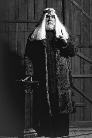 old druid bearded man with long beard on serious face and hair in fur coat and crown with gem stones jewellery on wooden background near column 写真素材