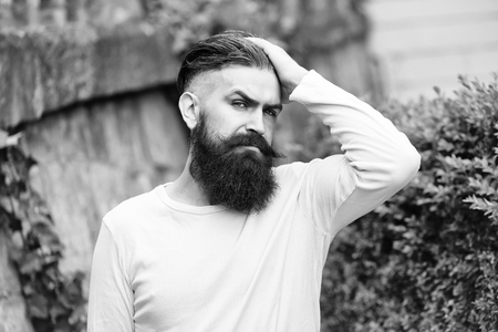Handsome young stylish hipster man with long beard in white shirt outdoor on stony wall background with green plant