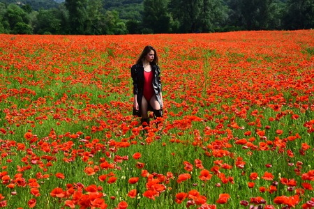 Woman in poppy flower field, harvest.